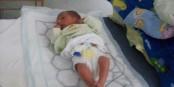 Раждане в 33 седмица